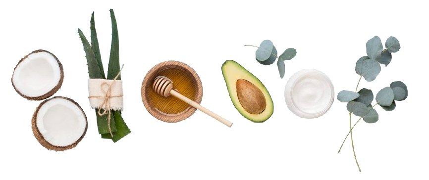 Handmade skin care ingredients: coconut oil, aloe vera, honey, avocado, face cream, eucalyptus.