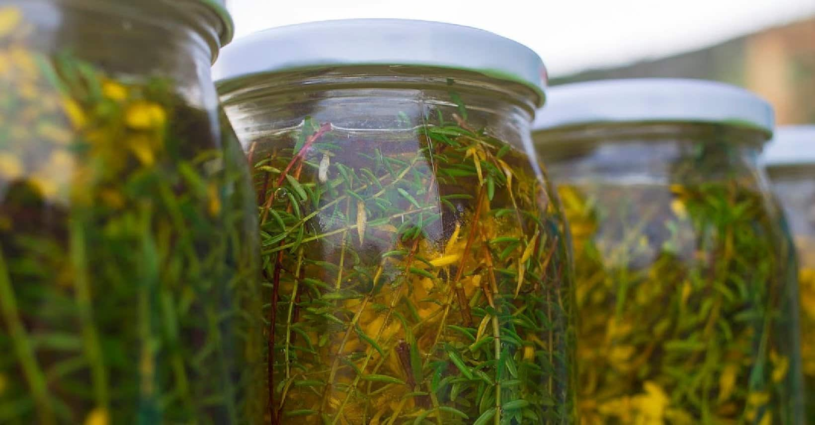 Herbs infusing in carrier oils for future use in skin care products