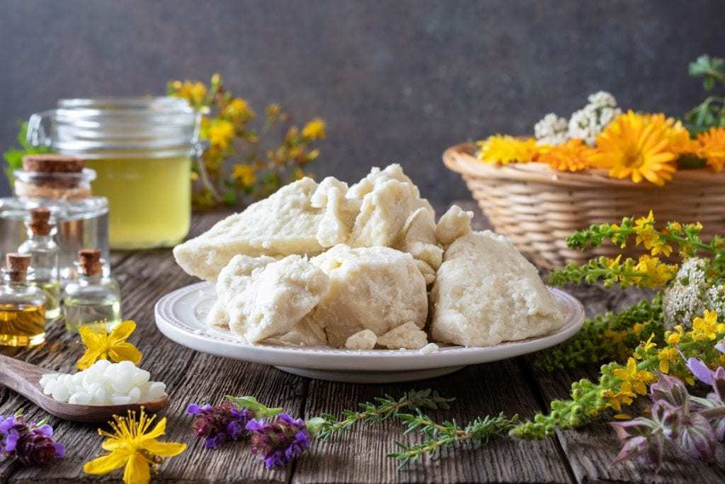 Plate of shea butter surrounded by beeswax and other natural skin care ingredients