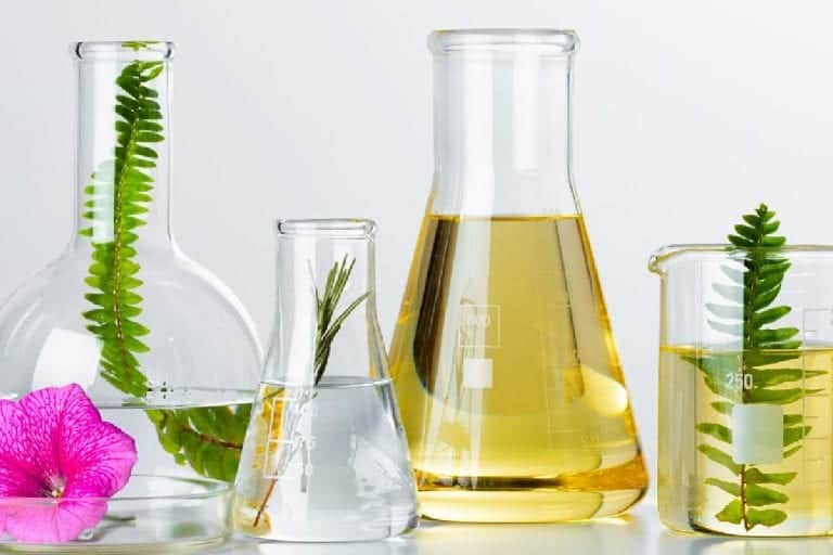 Top 7 Carrier Oils for DIY Skin Care Recipes