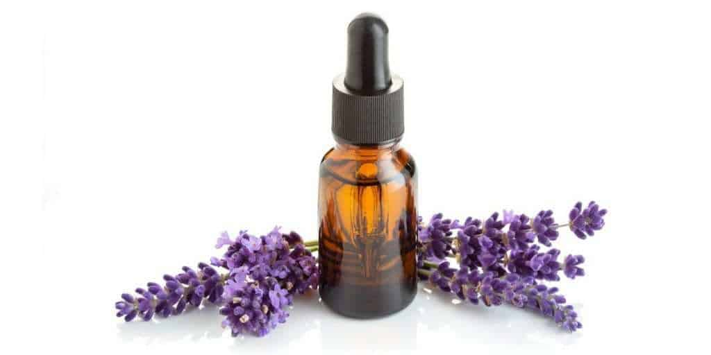 Amber dropper bottle of lavender essential oil surrounded by lavender buds.