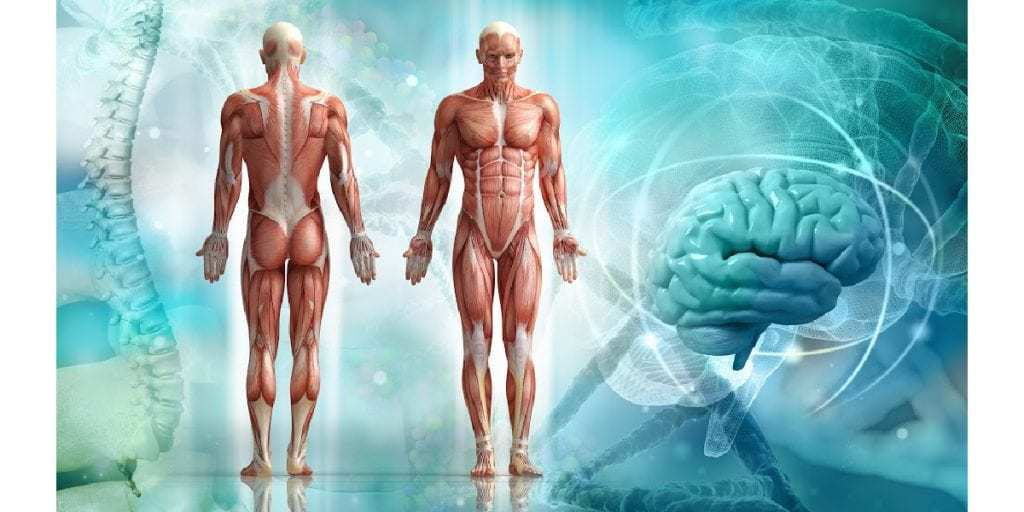 The mind and body are interlinked; what we are going through emotionally shows up in other forms throughout our body.