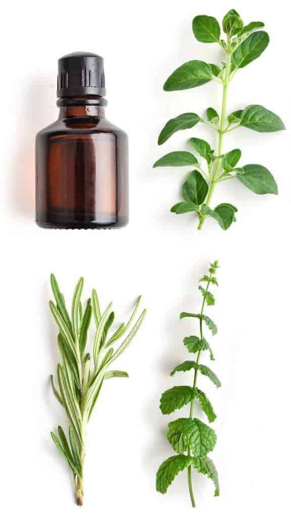 Amber essential oil bottle surrounded by fresh rosemary and peppermint.